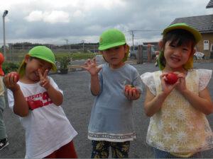 野菜の収穫!おいしくいただきました❤